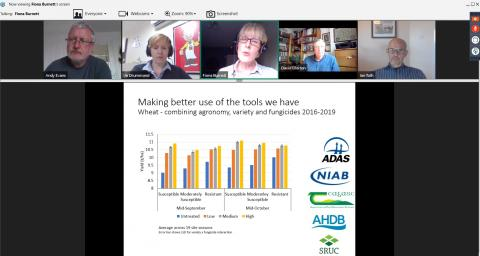 Snapshot of Plant Health Arable Conversation